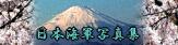 プラモデルを使った日本海軍写真集